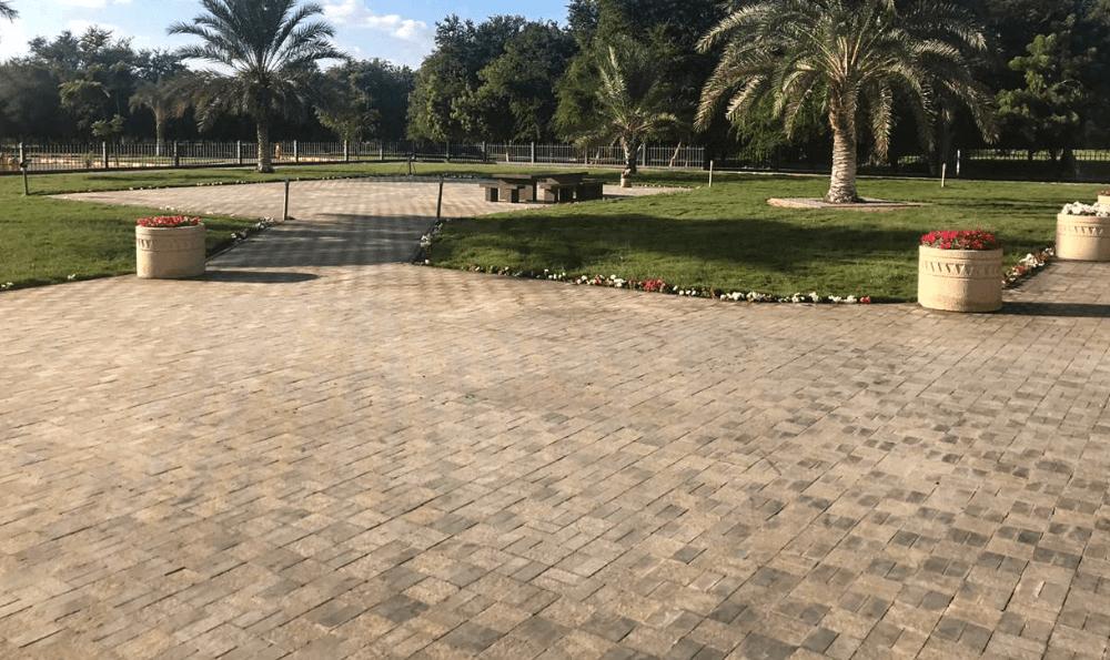 N.center park3